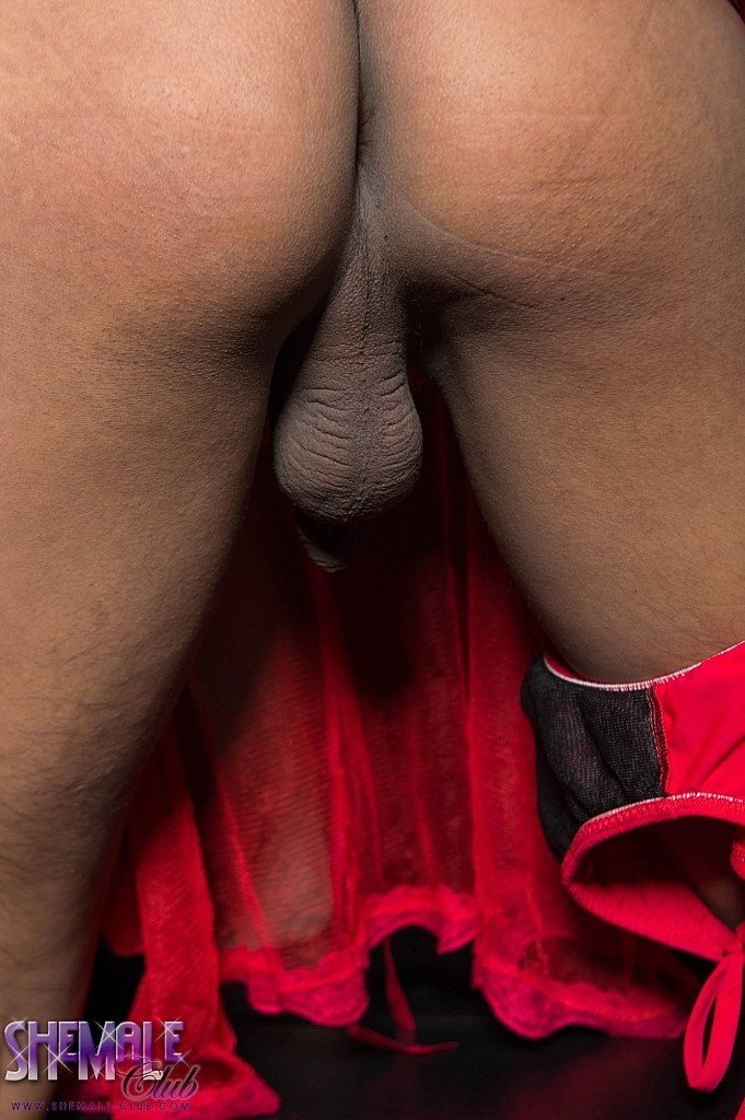 Can you handle the hardness of fanny s throbbing huge dong and